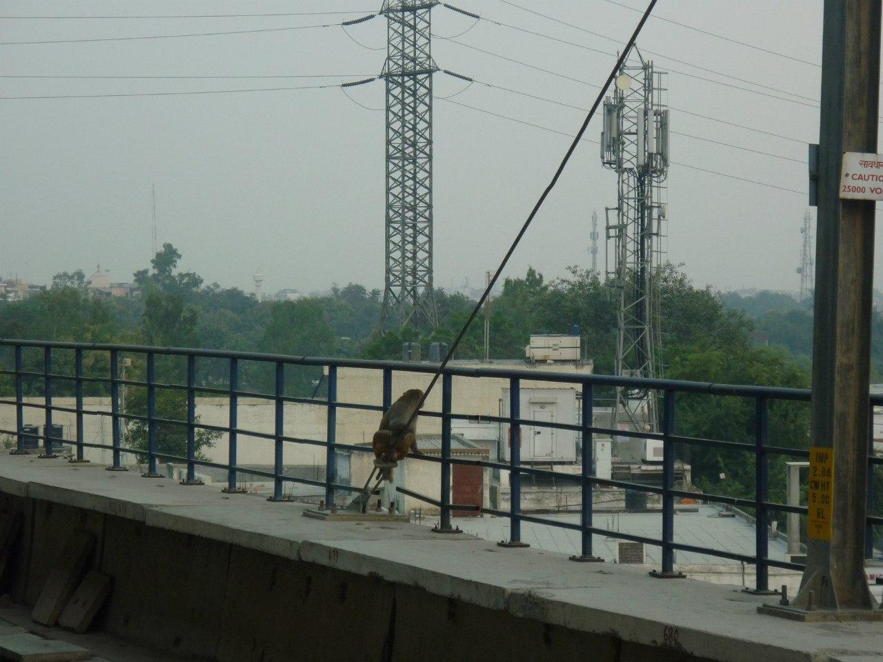 Индия. Дели. Станция метро