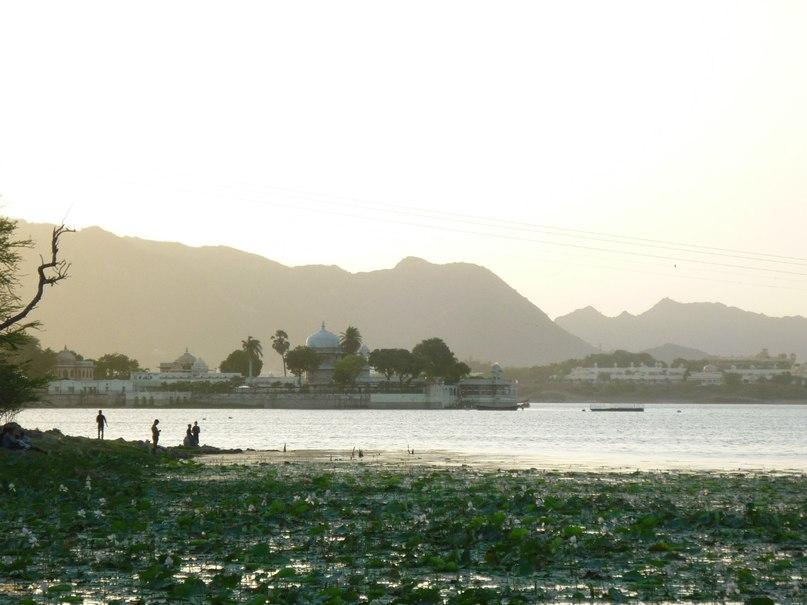 Индия. Удайпур