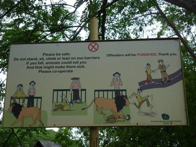 Индия. Майсор. Зоопарк