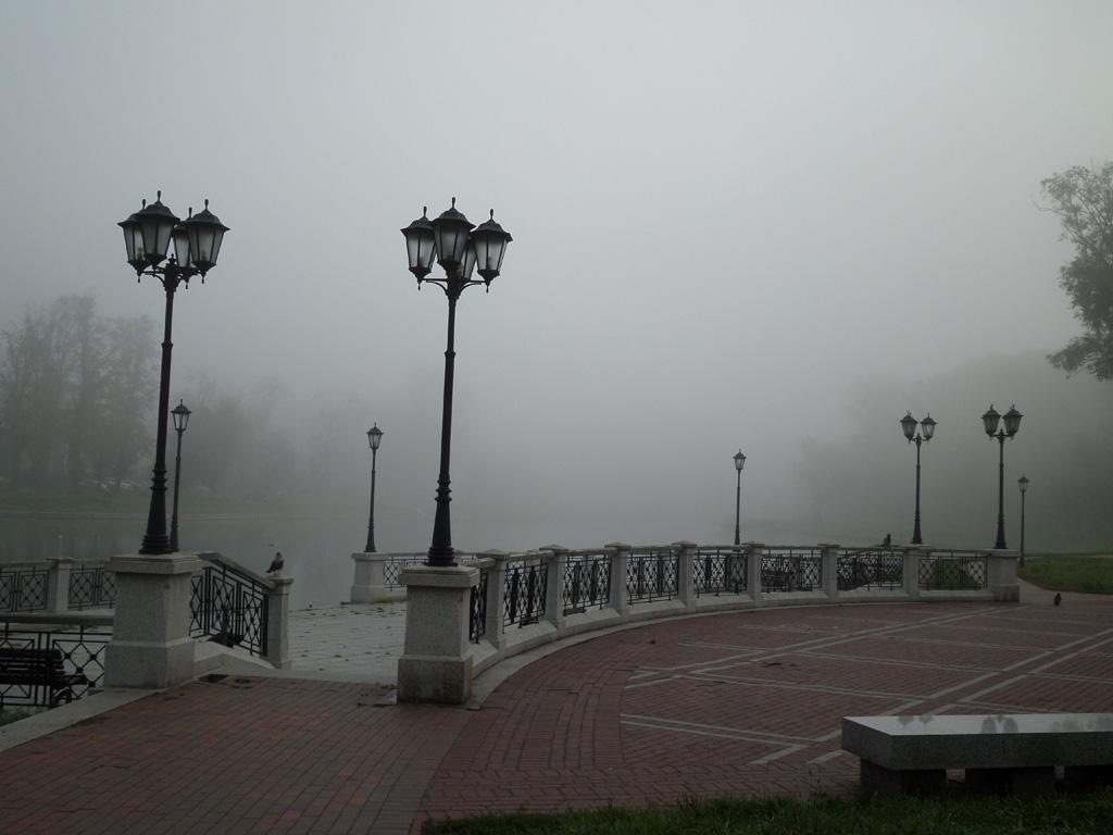 Золотая осень, Калининград