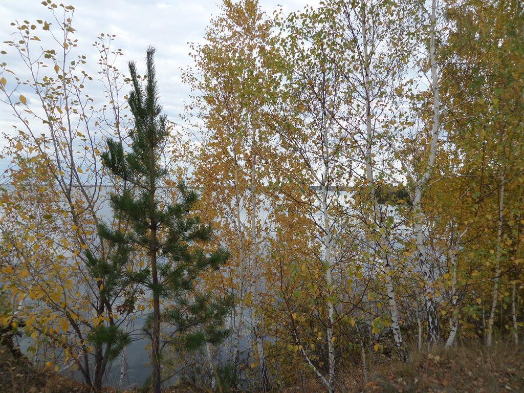 Урал, осень, времена года