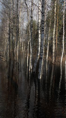 времена года, апрель, паводок