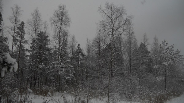 декабрь