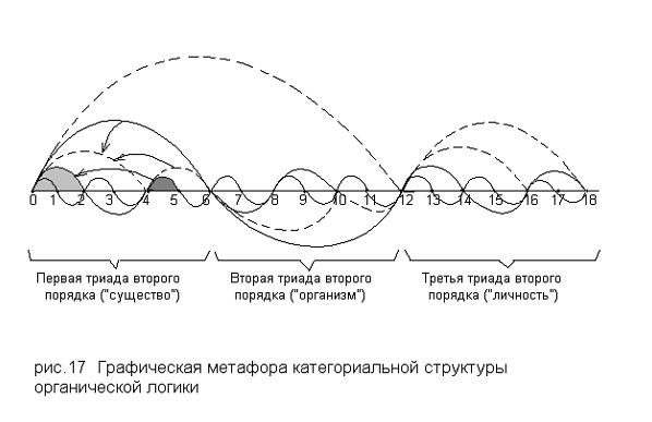 Графическая метафора категориальной структуры органической логики
